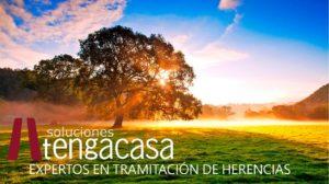 Soluciones Tengacasa: expertos en tramitación de herencias